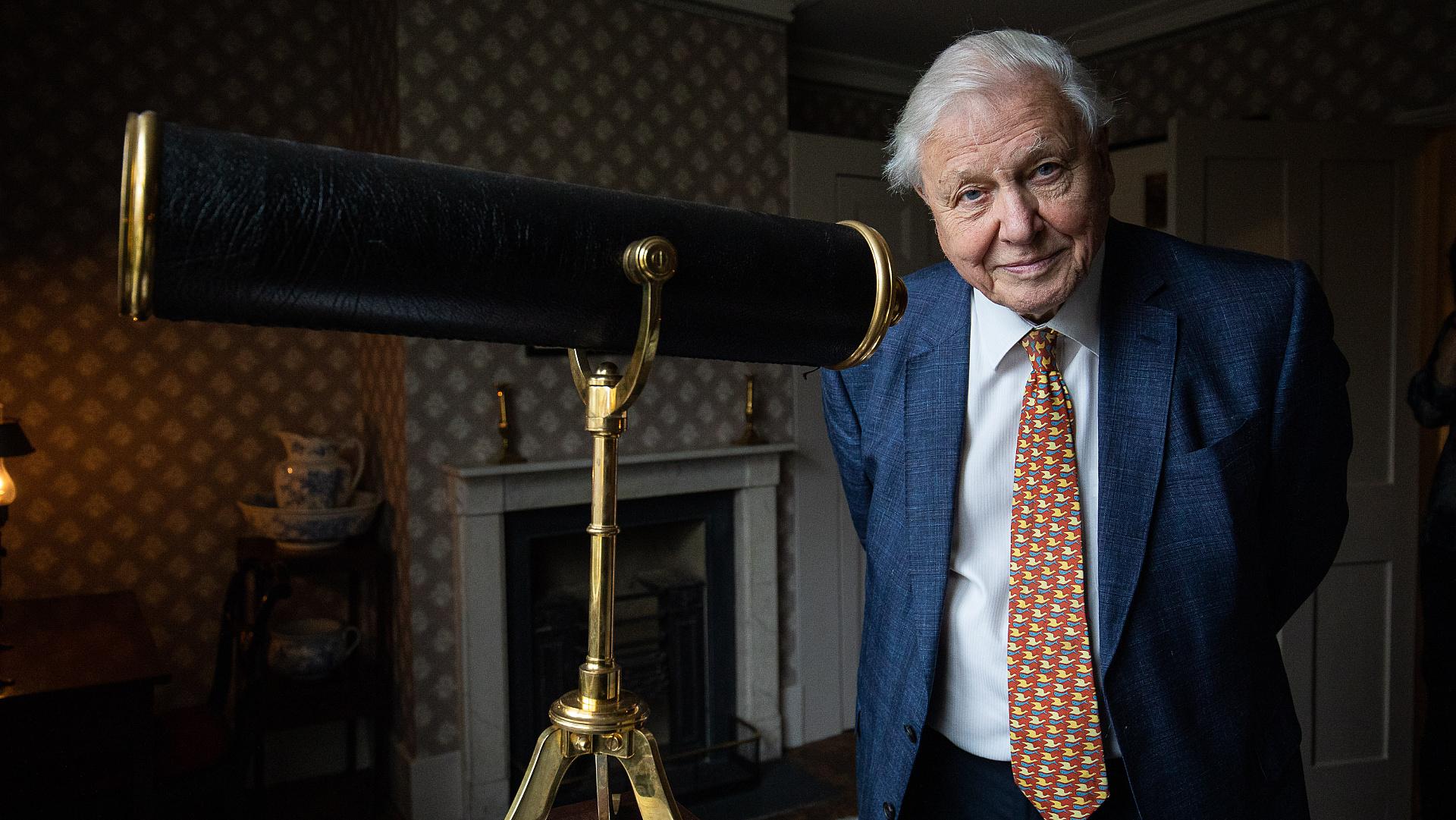Sir David Attenborough tanítja a gyerekeket a brit közszolgálati csatornán